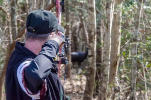 Hoyt Archery Alabama Pro/AM